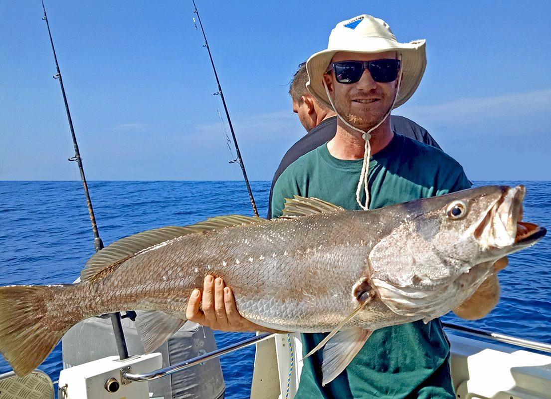 Gotcha- Quality jewfish, boated on a recent Wild Thing 2 charter to Double Island Point.