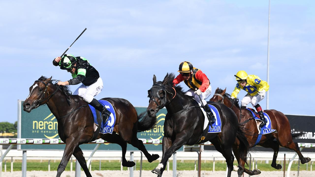 Sesar and Boomsara (right) fight out the Ken Russell Memorial Classic in May.