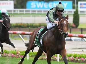 Price fillies stake claim for autumn riches