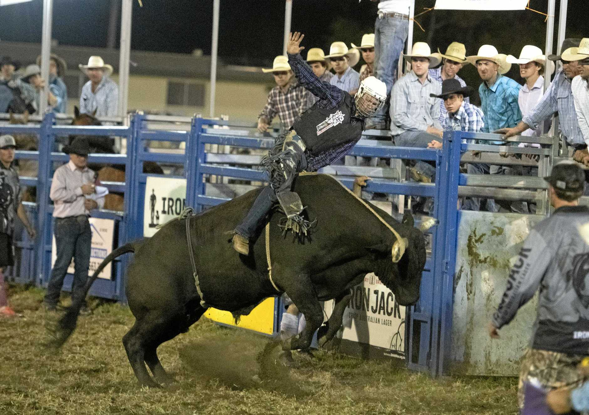 HOLD ON TIGHT: Josh Jones on his way to qualifying for the final in the open bullride at the Lawrence Twilight Rodeo.