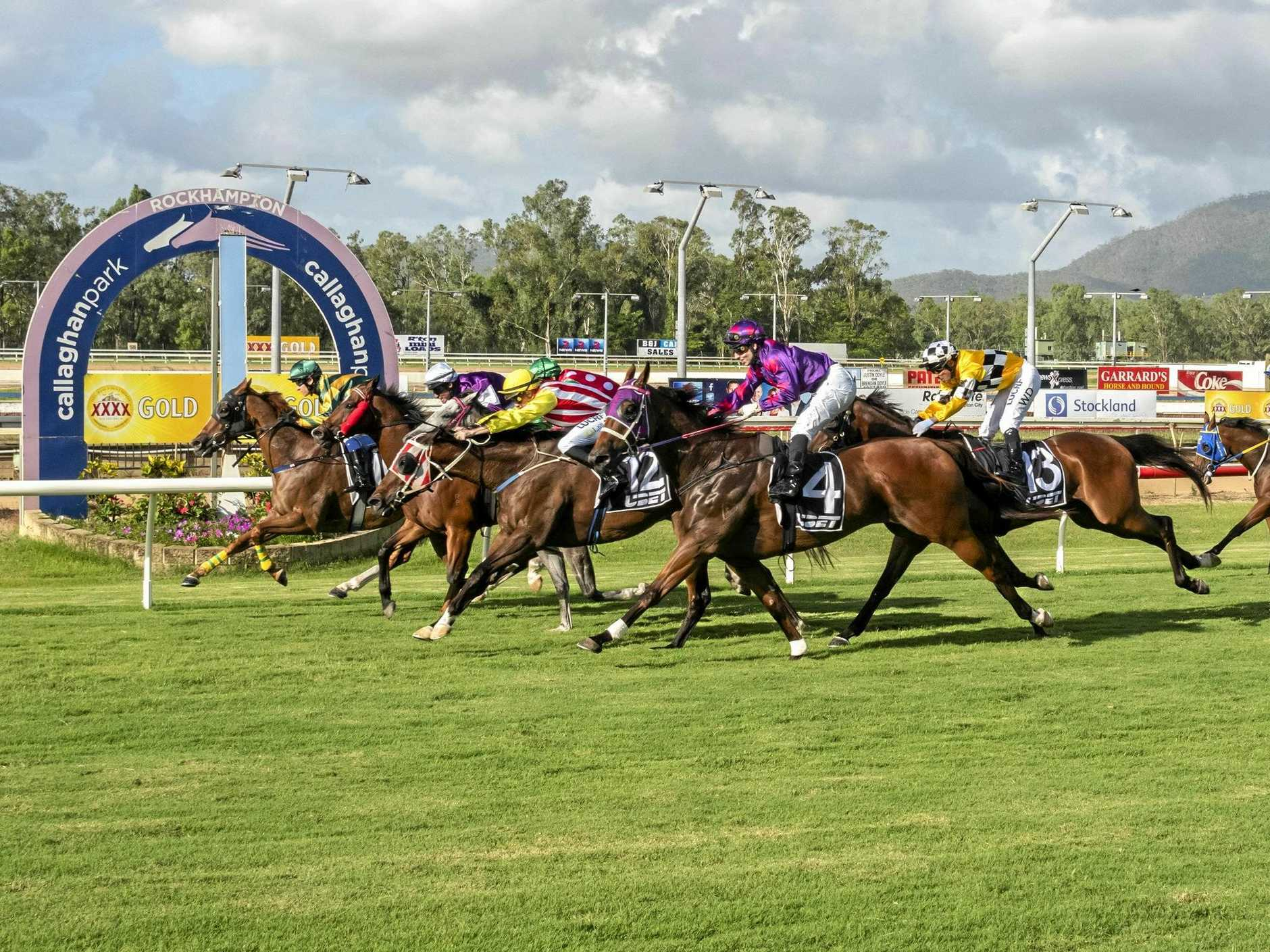 Heads were bobbing when Four Excel (inside) just beat Ragazzo Del Corsa (white cap) and Just Call Me Louie (yellow) with the grey head of Paradis Imperial (in between fourth) and Conga Del Sogno (outside) in a barnstorming finish in the last race of 2108 at Callaghan Park on Saturday.