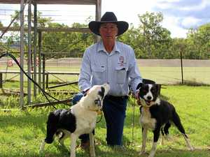 First trial for the year for dog handlers in a month
