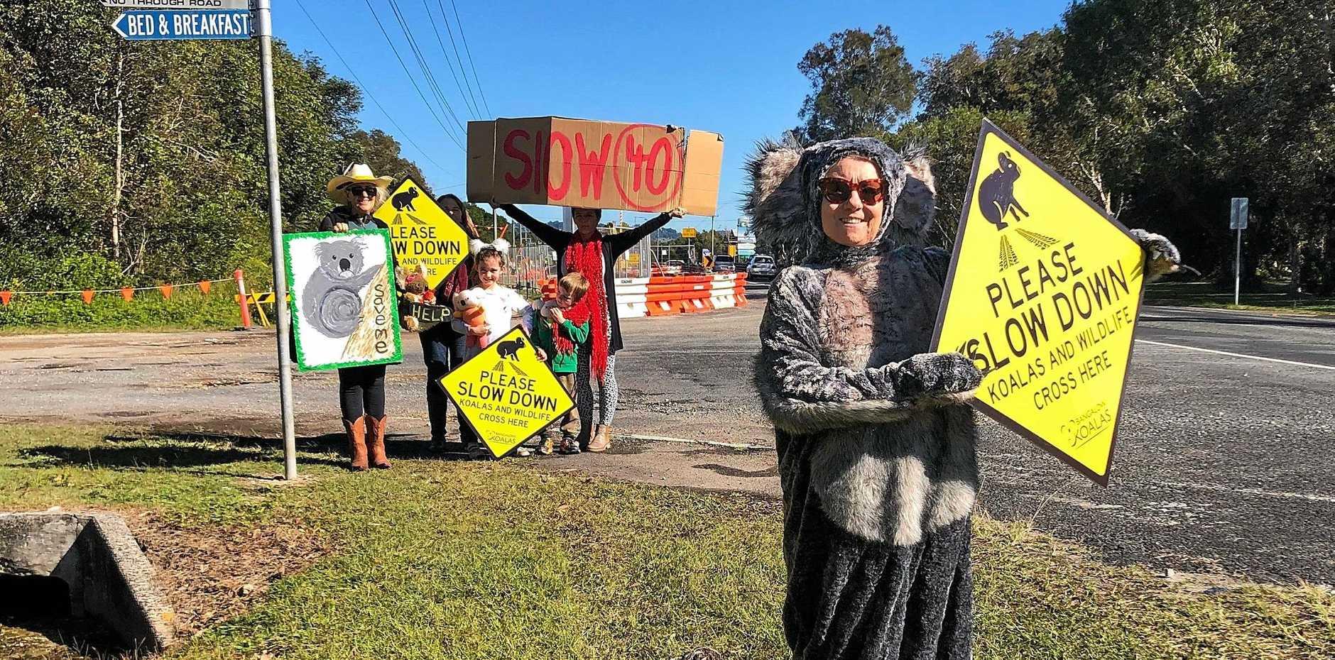 KOALA CAMPAIGNERS: President of Bangalow Koalas, Linda Sparrow with fellow members.