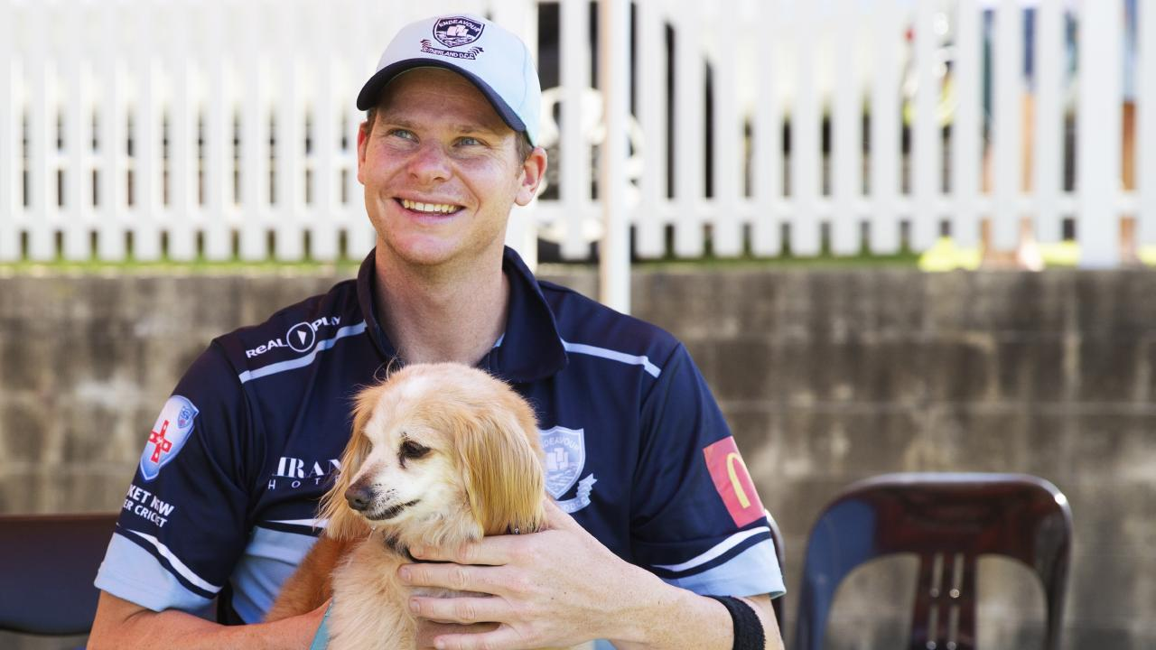 Steve Smith with his dog Charlie at the cricket where his team played David Warner's team. Picture: Jenny Evans