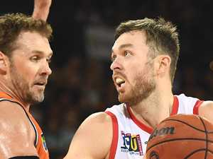Taipans still fighting despite losing streak