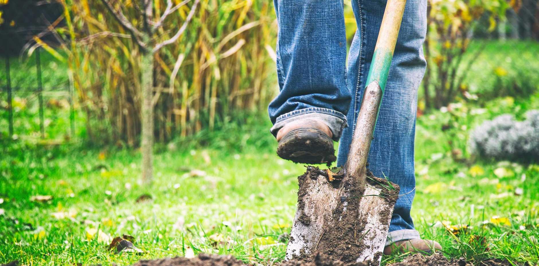 Ergon Energy urges people to take care around yard.
