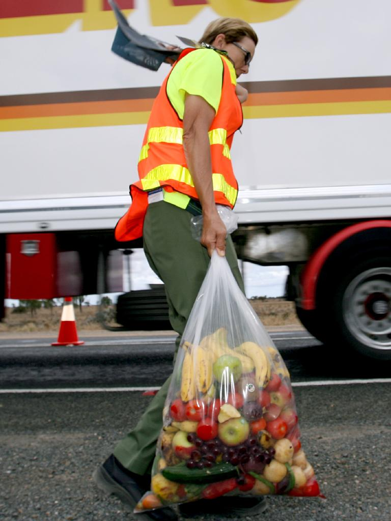 A quarantine officer carries a bag of confiscated fruit.