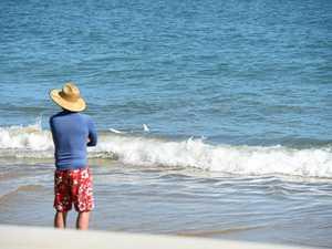 Bull shark hooked in Hervey Bay shallows