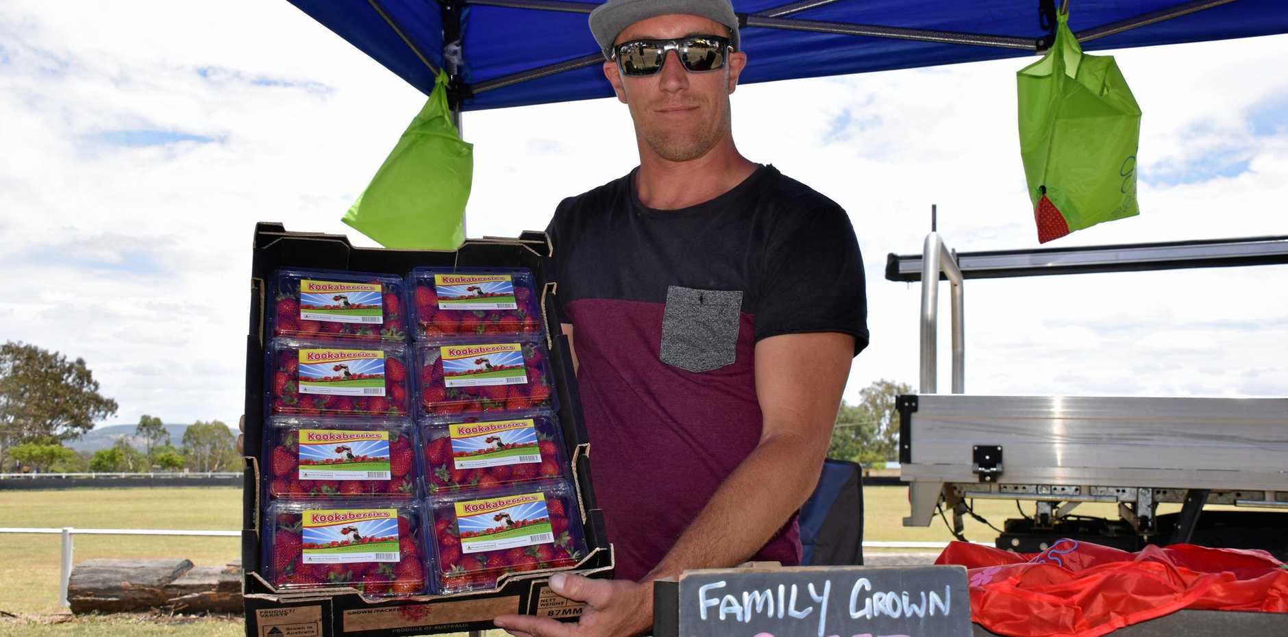 Wayne Wellman from Sunray Strawberries at the Nanango markets on Saturday.