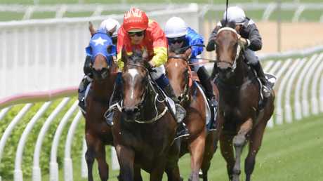 Hightail scored his second win in three starts in fine style at Randwick. Picture: AAP
