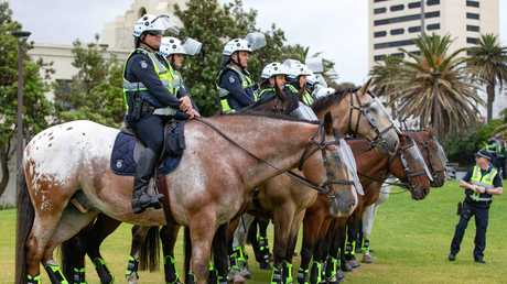 Mounted police ready for action if required. Picture: Sarah Matray