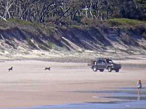 Council, cops check on 4WDs on beach