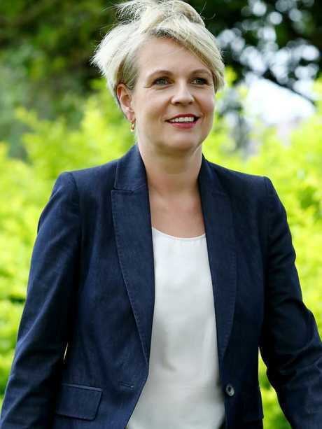 Tanya Plibersek called on the PM to condemn Mr Anning's attendance. Hollie Adams/The Australian