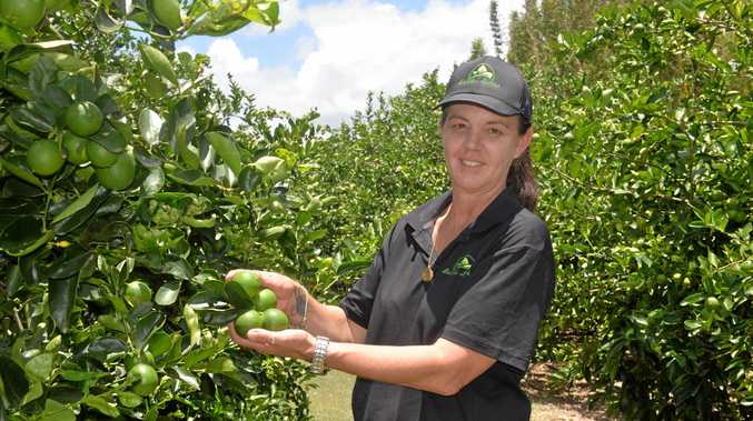 LIMELIGHT: Bundy Limes owner Linda Vickers in her element.
