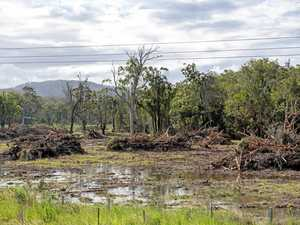 Agforce challenges 'confusing' land-clearing laws
