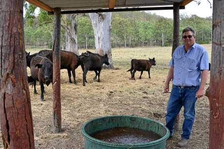Andrew McSweeny's cattle farm at Mummulugum is dry.