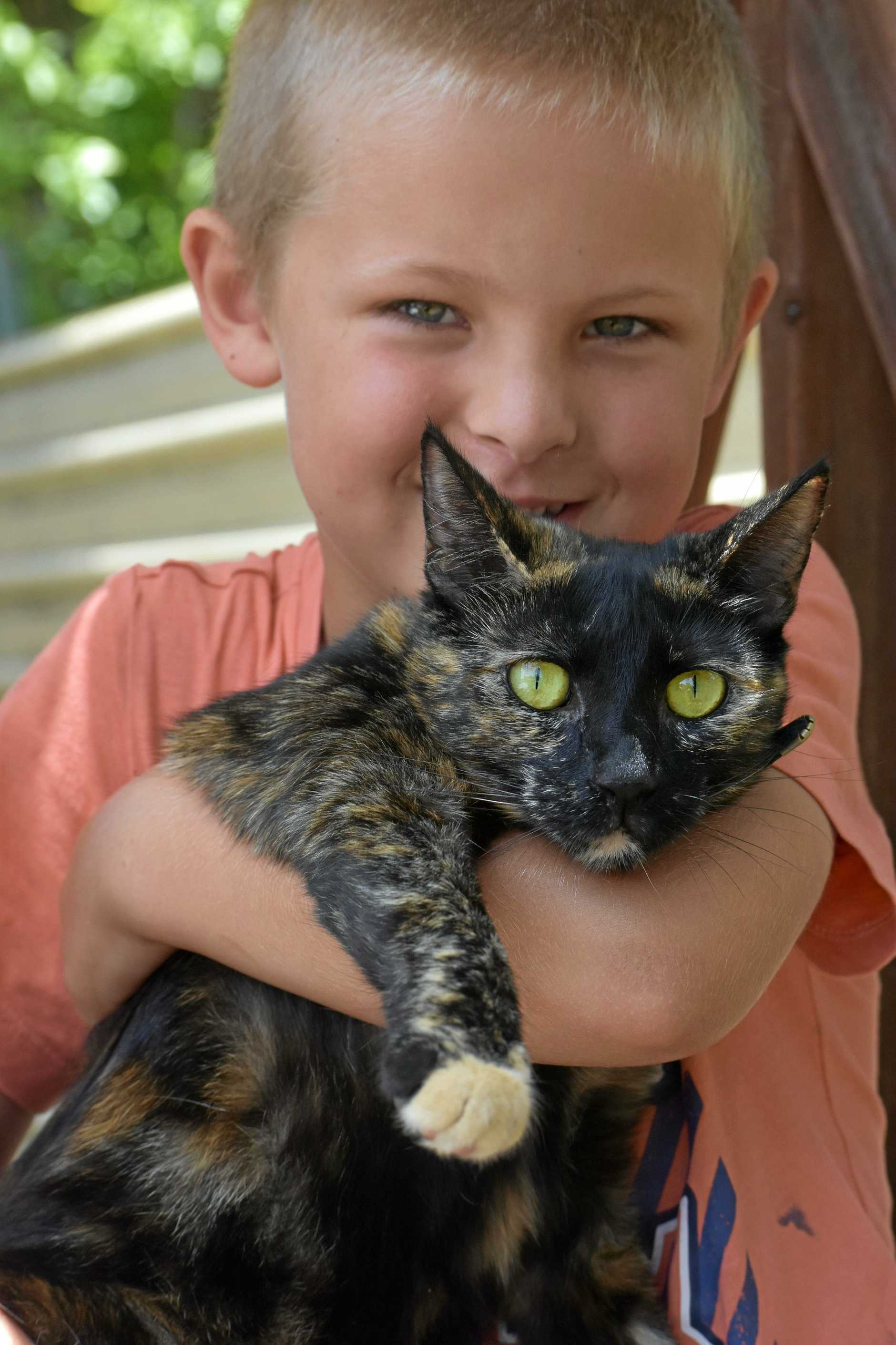 Six-year-old Will Catlin with the two-year-old cat