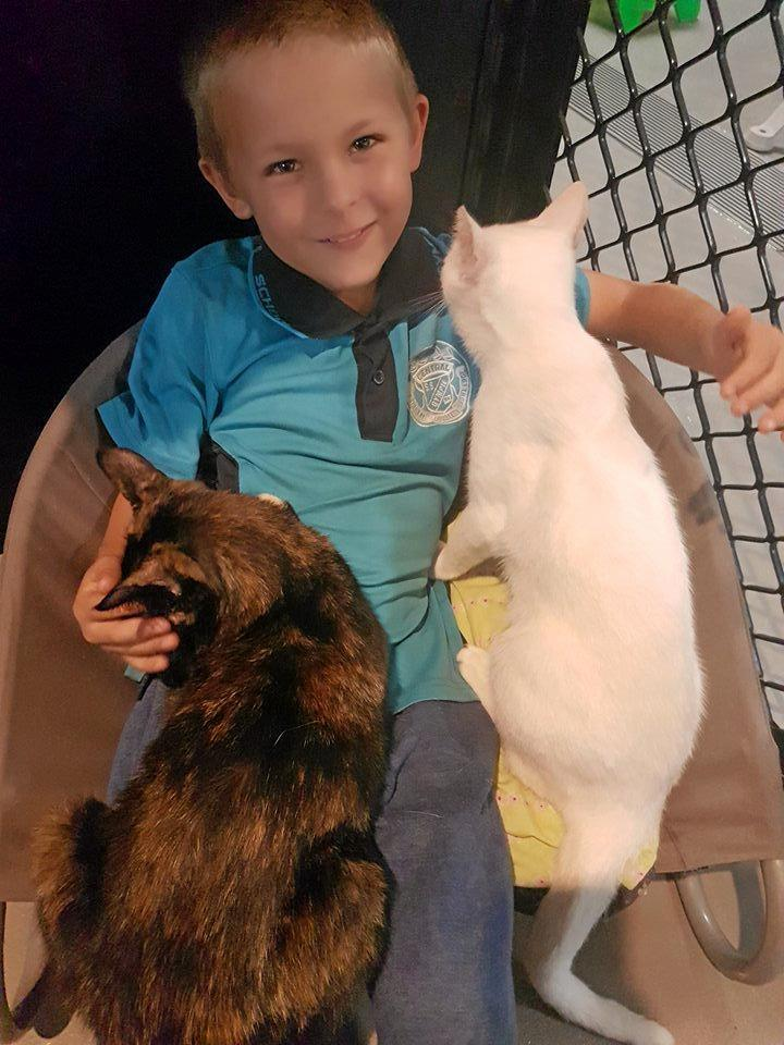 Will Catlin meets Kitty (left) for the first time.