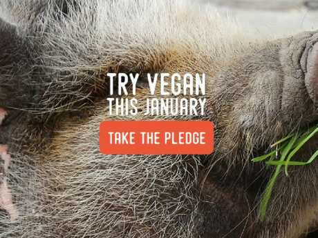 Veganuary is a campaign aiming to encourage people to change to a plant based diet for a month.