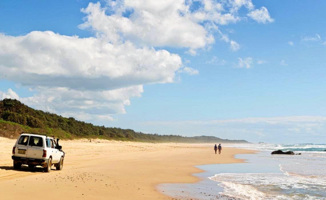 Coffs Harbour City Council has released its draft policy proposing changes to where people can drive on local beaches.