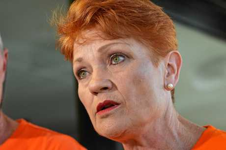 One Nation leader Pauline Hanson has proposed for a 10c scheme on cane toads.