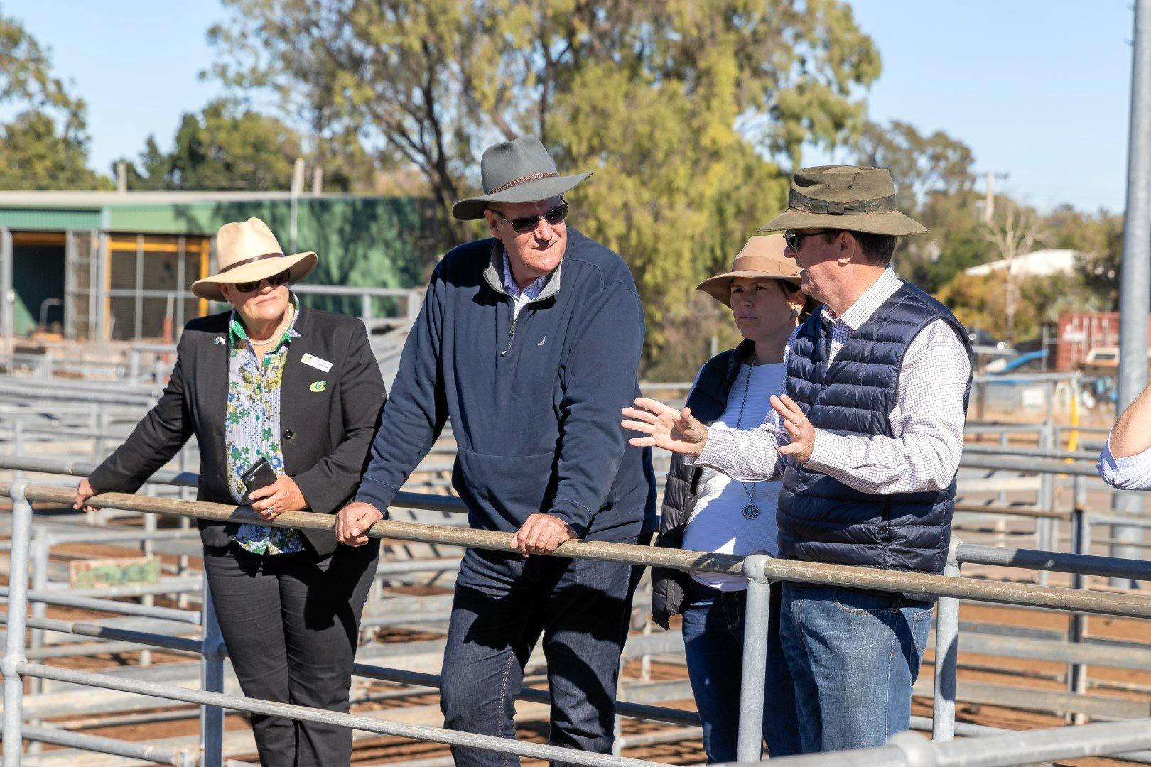 Central Highlands Regional Council Cr Christine Rolfe, Minister for Agricultural Industry Development and Fisheries Mark Furner, Cr Megan Daniels and Mayor Cr Kerry Hayes inspecting the Emerald saleyards.
