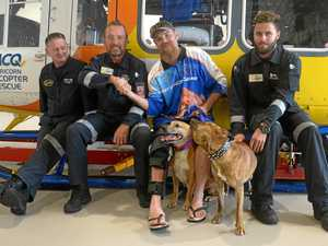 CQ man and man's best friend reunite with rescue team
