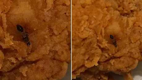 When she unwrapped it at home she found a large ant embedded in the chicken. Picture: Yahoo 7 News