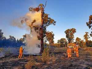 Bushfire reviews now open to public