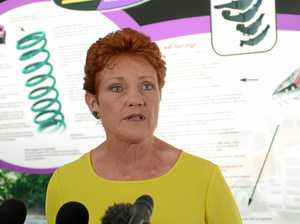 Pauline Hanson takes credit for Liberal 'apprentice bonanza'