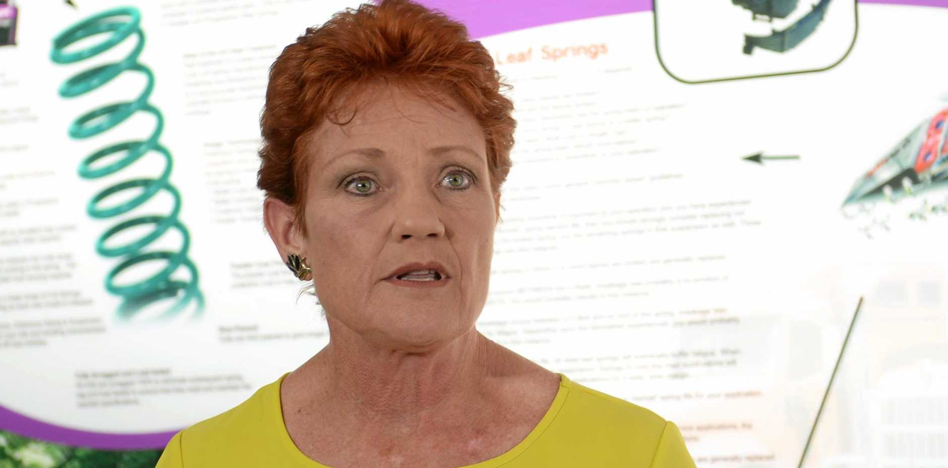 BACKING BUSINESSES: Senator Pauline Hanson wants to see more apprentices in work in the new year around CQ.