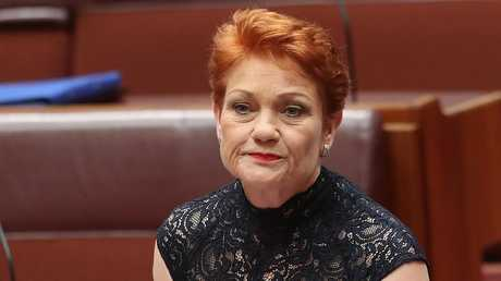 Hanson's cane toad suggestion is just her latest attack on the unemployed. Picture: Kym Smith