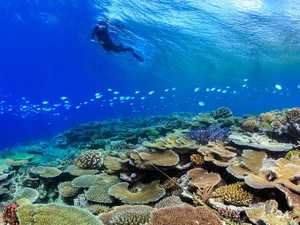 How controversial $443m Reef grant will be used