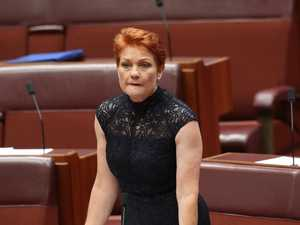 Pauline Hanson, you're the real pest