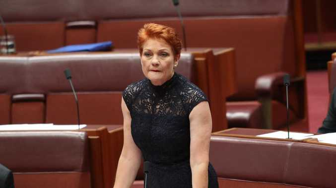 Senator Pauline Hanson says welfare recipients should be put to work killing cane toads. Picture Kym Smith