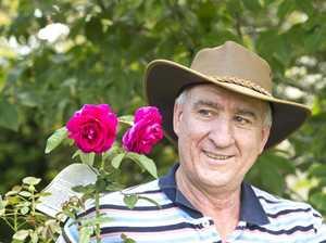 Brindabella roses go stateside