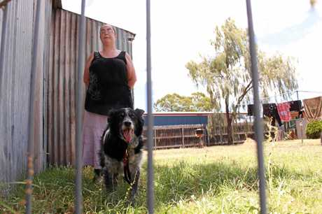 NEW RULE: Warwick resident Eileen Harlow says  her border collie prevents meter readers from accessing her energy consumption data. She is in favour of new laws that allow customers to provide their own readings when they are not happy with an estimated bill.
