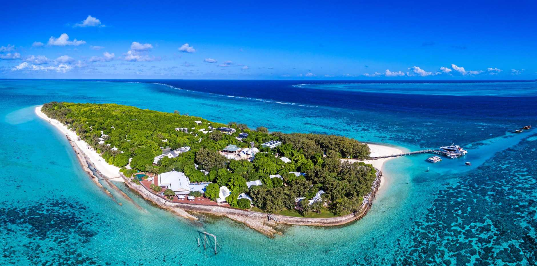SPECIAL PLACE: Heron Island will feature on  Blue Planet Live , which is expected to be watched by millions when its four episodes are streamed globally in March.