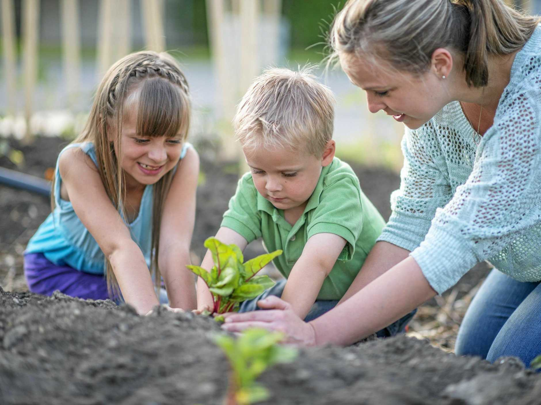 Most kids really enjoy nurturing plants and watching them grow.