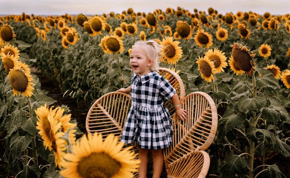 The Chronicle readers submit photo of the region's sunflower fields. Carlie Wheeler's photo of Cleo Wheeler.