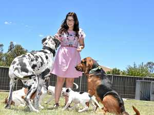 Lauren saves the lives of more than 50 dogs