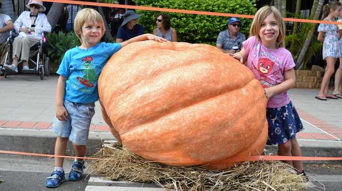 The secret to growing a 374kg pumkin
