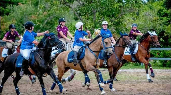 Rivals Queensland and NSW meet in horseball series
