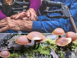 Melbourne magic mushroom therapy trial for terminally ill