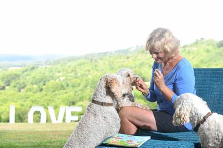 Dr Dawn Macintyre has written the book series about four gorgeous oodles, Charli (spoodle), Dougal, (cavoodle), Barnzy (labradoodle) and Riley our Groodle, living at Highland Retreat in Clunes