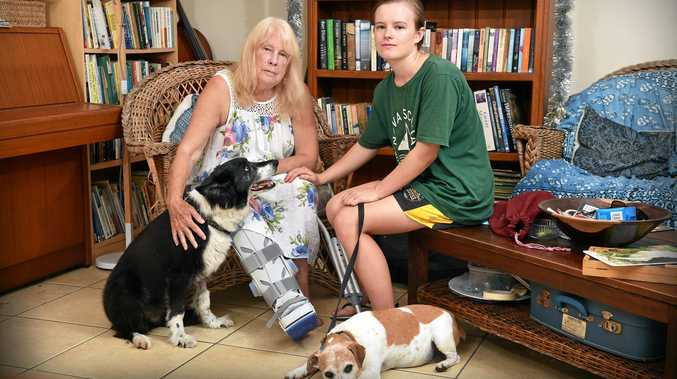 Plea to pet owners after 'aggressive' frenchie attack