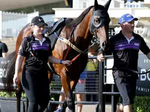 Door left ajar for Winx to join All-Star cast