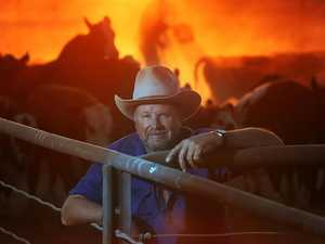 SOLD: World's second-biggest cattle station