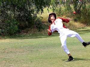 RCQ140119 Cricket