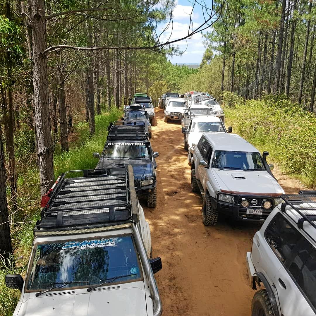 The Beerburrum Forest is a popular destination for four-wheel-drive enthusiasts.